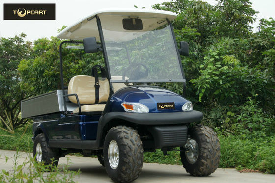 High Power Golf Carts on power golf book, power sprayer, power tools, power golf trolley, power trailer,