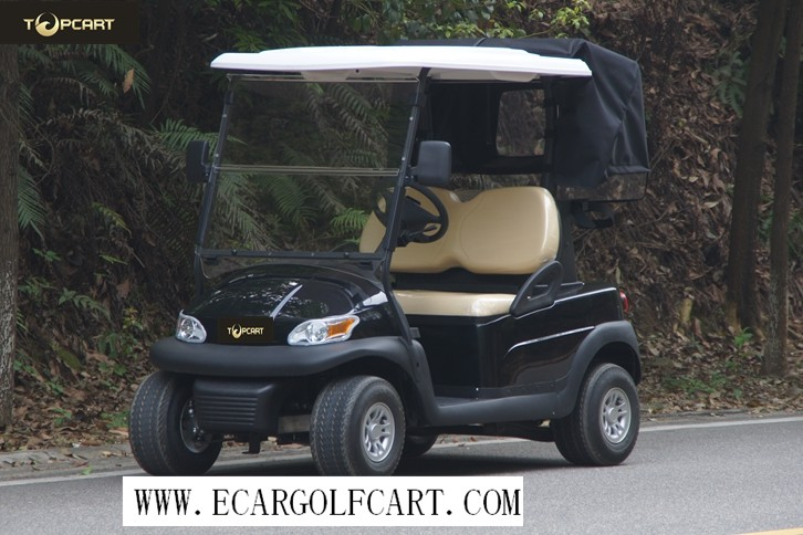 Eco - Friendly Colorful 2 Seater Golf Cart , Battery Low Speed Electric Vehicles