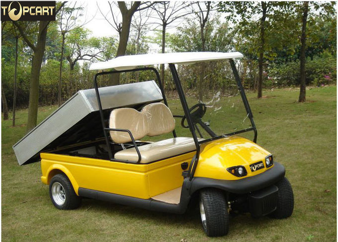 Electric Powered Utility Golf Cart 2 Passenger With Rear Cargo Bed